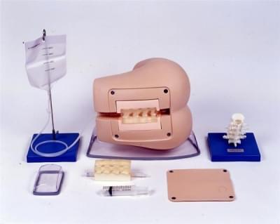 M43B - Lumbar Puncture Simulator