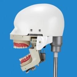 Dental Training