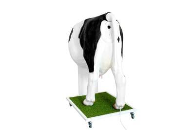 MZ02390 - Emma Cow - Advanced simulator for artificial insemination (AI) of the cow