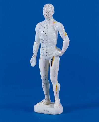 Acupuncture figure, male, 26 cm