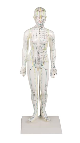Acupuncture figure, female