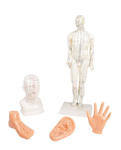 Acupuncture set, 5 models