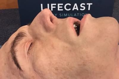 Lifecast- Adult Male