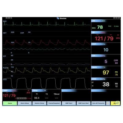 8000969 - CARESCAPE™ B40 Patient Monitor Screen Simulation for REALITi360