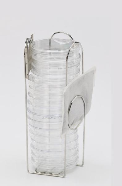 Petri dishes small holder