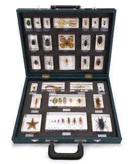 Kufr s 27 různými vloženými exempláři
