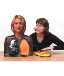 Lou-Wheeze Smoker's Lungs Comparison Model