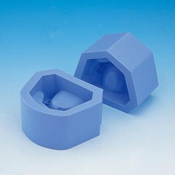 Plaster Model Mold (class II division 2 deep overbite)