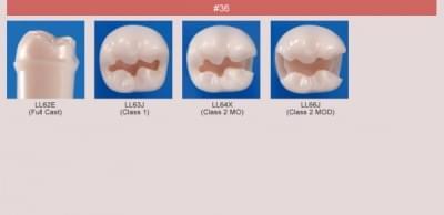 Abutment, Cavity Preparation Tooth Model (#36)