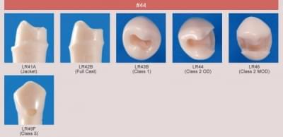 Abutment, Cavity Preparation Tooth Model (#44)