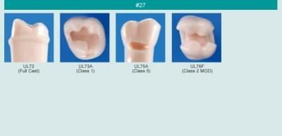 Abutment, Cavity Preparation Tooth Model (#27)