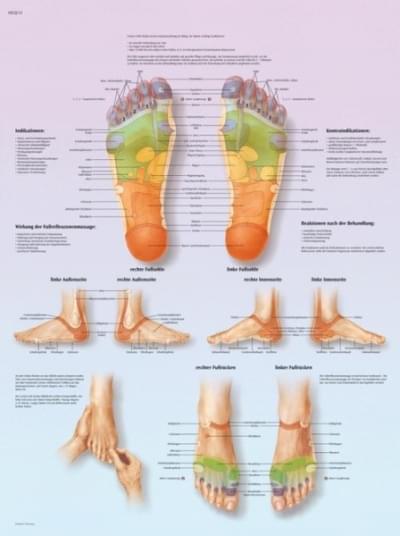 VR1810L - Foot Reflex Zones massage