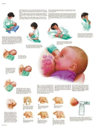 VR1557L - Breast Feeding