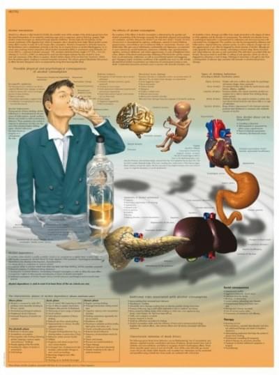 VR1792L - Alcohol Dependence