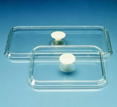 Lid to the tray of instruments 340 × 245 mm PS, transparent, with fingerboard