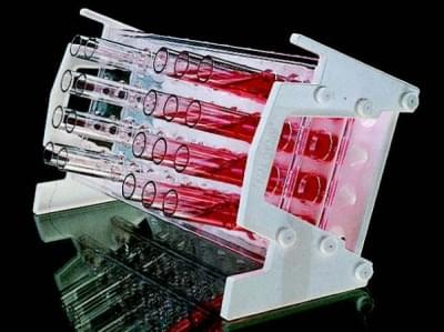 Stojan na zkumavky, nakloněný, PC, 4 × 10 míst, pro průměr 20 mm - 4x10 míst