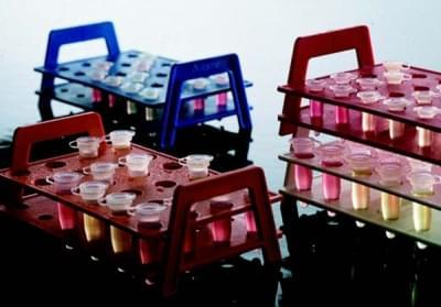 Stojan na mikrocentrifugační zkumavky, bílý, 4 × 6 míst, pro průměr 1,5 mm - 4x6 míst