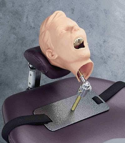 SB31044 - Pediatric X-Ray Dental Manikin
