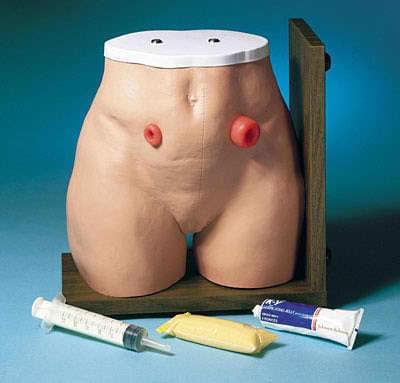 LF00906 - Ostomy Care Simulator