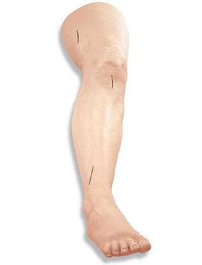 LF01034 - Suture and Stapling Practice Leg