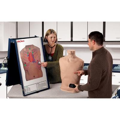 LF01191 - Complete Auscultation Training Station