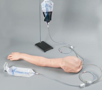 LF01271 - Advanced Multi-Venous IV & Injection Arm