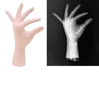 41926-050 - Left Hand (Transparent)