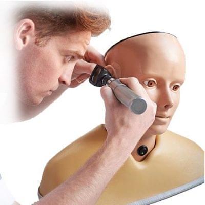 AR402   DIGITAL EAR EXAMINATION TRAINER, WHITE